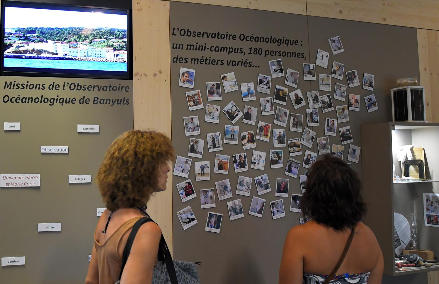 OBSERVATOIRE OCEANOLOGIQUE DE BANYULS - FONDATION GROUPE DEPECHE